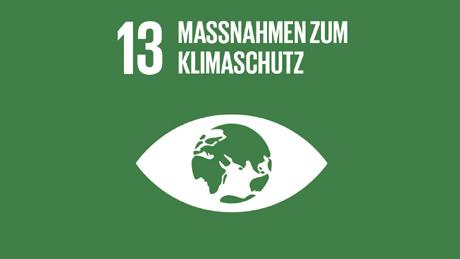 Accelerating Net Zero SDG 13