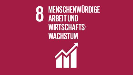Accelerating Net Zero SDG 8