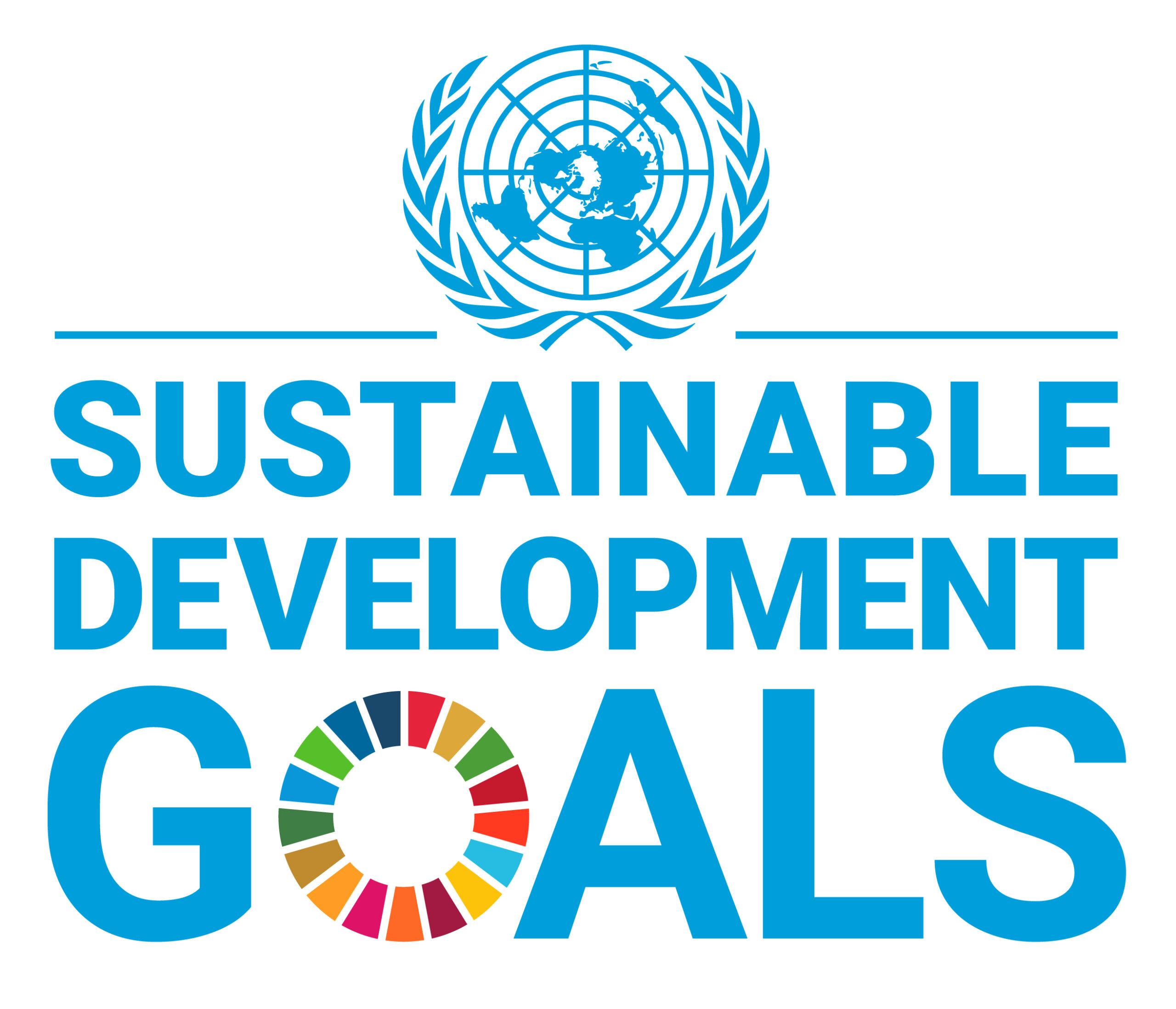 E SDG Logo UN Emblem