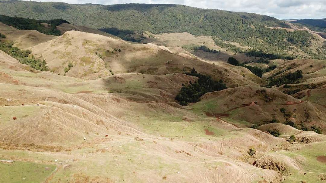 Neuseeland Wai